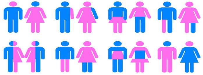 Gender Diskussion